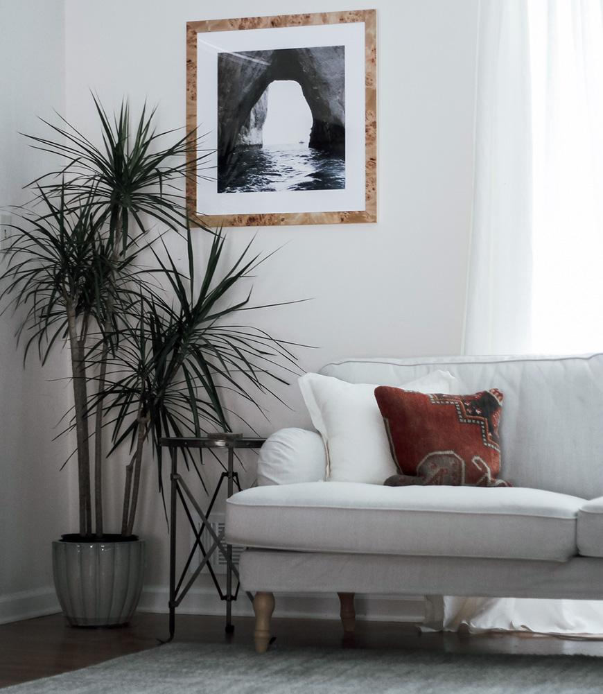 Растения или цветы в углу комнаты